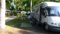img Flower Camping - La Canadienne