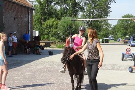 ringsteken met pony