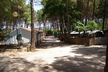 Homepage http://www.campingsacedon.com