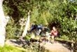 © Homepage www.sortland-camping.no