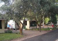 Homepage http://www.villagecampingmillepini.it