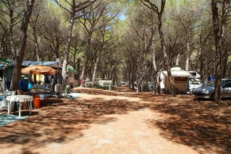 Homepage http://www.campingpe.it
