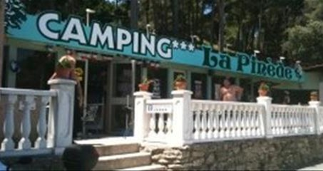 http://www.campingpinede.fr