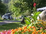 Camping Le Schlossberg