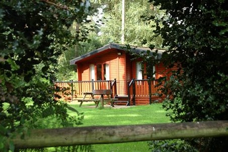 Luxury woodland lodges.