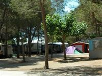 © Homepage www.campinglospinos.com