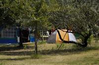 Camping Ca'Savio - Pitch All rights reserved