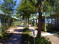 © Homepage www.campingfreebeach.it