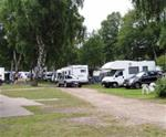 img Ljungens Camping