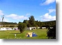 © Homepage www.borderforestcaravanpark.co.uk
