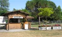 Camping aire naturelle Les Cigales