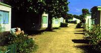 http://www.campingsablesvignierplage.com/