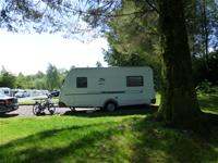 img Lomond Woods Holiday Park