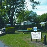 Camping and Caravanning Club Site, Chertsey