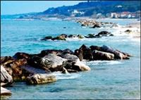 © Homepage www.camping.it/abruzzo/sangro