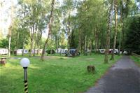 img Camping Forelle