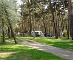 img Camping am Oberuckersee