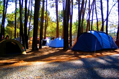 Homepage http://www.campingsaomiguel.com