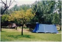 © Homepage www.campingfattoria.it