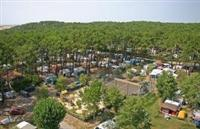 © Homepage www.camping-albret-plage.fr