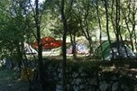 A typical woodland terrace pitch. Tents of various sizes are available for hire or bring your own and choose your spot.