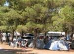 img Camping Paklenica