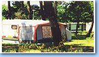 © Homepage www.camping-despins.com/