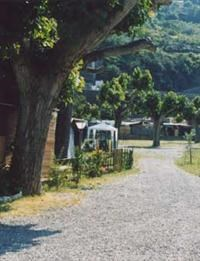 © Homepage www.campingroma.it