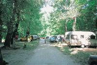 © Homepage www.le-camping-international.com/