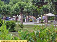 img Flower Camping le Martinet
