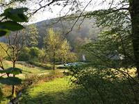img Odenwald-Camping-Park