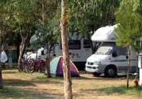 © Homepage www.campingadriatico.it