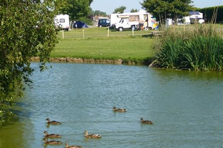 Duck Pond and Site