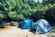 © Homepage www.campingasinara.it