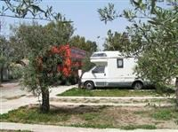 © Homepage www.campingathenaselinunte.it