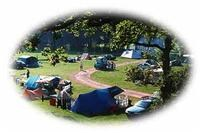 © Homepage www.fishergroundcampsite.co.uk