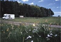 Camping and Caravanning Club Site, Cannock Chase