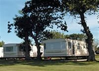 The 65 holiday caravans are set among trees and shrubs.