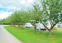 Arrow Bank Caravan Park