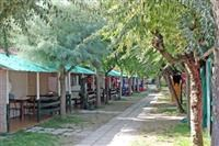 © Homepage www.camping.it/italy/marche/delparadiso