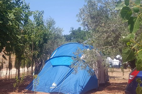 The tent pitch is bordered by hedges with a private parking space inside the parcel, the tent parcel also has the option of an electrical connection. The camping shared facilities include a kitchen with utensils, washing area, exclusive toilets with hot water showers, ecological soap, safety boxes for valuebles and an electrical connection available inside the reception.